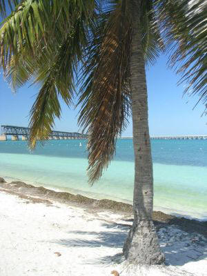 Swim beach at Bahia Honda